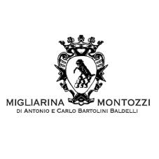 Presentazione nuovi vini Castello di Montozzi e Vinile